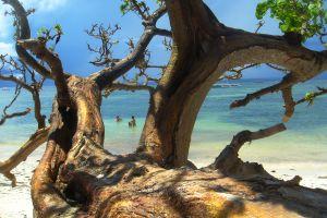 Malerische Strand-Schönheit