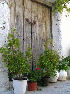 Zypern: Kleiner Garten vor der Haustür